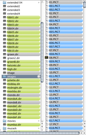 Screenshot of the folders containing the different series of images.